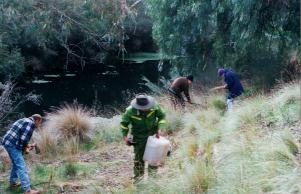 Friends group planting the vegetation zone closest to the creek - known as the Riparian Zone